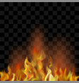 hot red burning fire flame with flying embers vector image