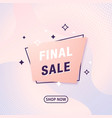 abstract geometric banner final sale modern vector image vector image
