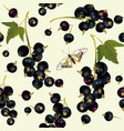 Black currant seamless pattern vector image vector image