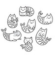 collection with cartoon cats mermaids in contour vector image vector image