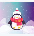 cute penguin in hat and scarf winter vector image vector image