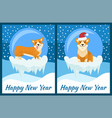 happy new year congratulation from playing corgi vector image vector image