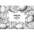 lemon label drawing citrus fruit engraved vector image vector image
