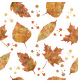 nature seamless pattern with autumn leaves vector image vector image