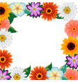 different colorful flowers frame vector image