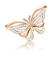 a jewelry brooch shiny golden butterfly with vector image vector image