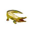 Alligator Crocodile Gaping Mouth Low Polygon vector image vector image