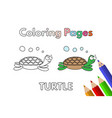 cartoon turtle coloring book vector image vector image