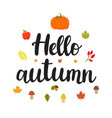hello autumn beautiful poster with mushrooms vector image