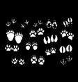 imprint icons animal or birds foot paws vector image vector image