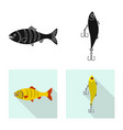 isolated object of fish and fishing logo set of vector image
