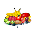 Lots of ripe exotic fruits together vector image vector image