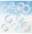 Soap bubbles with transparency vector image