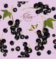 black currant tea seamless pattern vector image