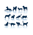 dogs and cats silhouettes vector image