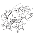 Drawing fishing vector image vector image