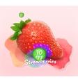 Strawberry watercolor vector image