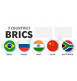 brics association 5 countries flat simple vector image vector image