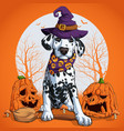 dalmatian in halloween disguise sitting vector image vector image