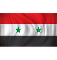 Flag of Syria vector image vector image