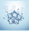 ice cubes vector image