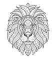 lion coloring for adults antistress hand drawn vector image