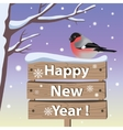 New year card with bullfinch vector image vector image