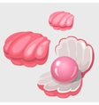Open and closed pink shell box with pearl vector image vector image