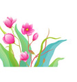 packaging or greeting card flowers and greens vector image vector image