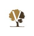 tree letter v vector image vector image
