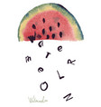 watercolor of watermelon vector image