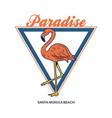 beautiful pink flamingo tropical paradise vector image