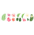 floral set collection with isolated colorful hand vector image vector image