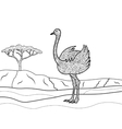 Ostrich coloring book for adults vector image vector image