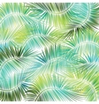 Palm tree branches on white background vector image vector image