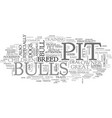 a pit bull could be the right dog for you text vector image vector image