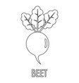 beet icon outline style vector image