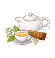 cinnamon tea vector image