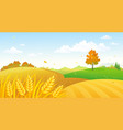 fall fields landscape vector image