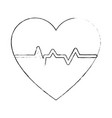 heart and cardiology