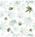 hemp pattern vector image vector image