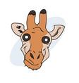 hypnotic giraffe face vector image vector image