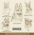 set hand drawing dogs 9 vector image