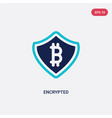 two color encrypted icon from blockchain concept vector image vector image