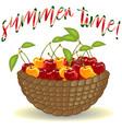 wicker picnic basket with berries vector image
