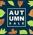 autumn sale banner with watercolor leaves vector image vector image