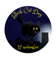 black cat day vector image