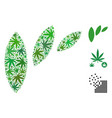 flora leaf abstraction composition of weed leaves vector image
