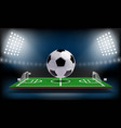 football or soccer playing field 3d ball sport vector image vector image