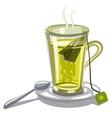 green tea in glass vector image vector image